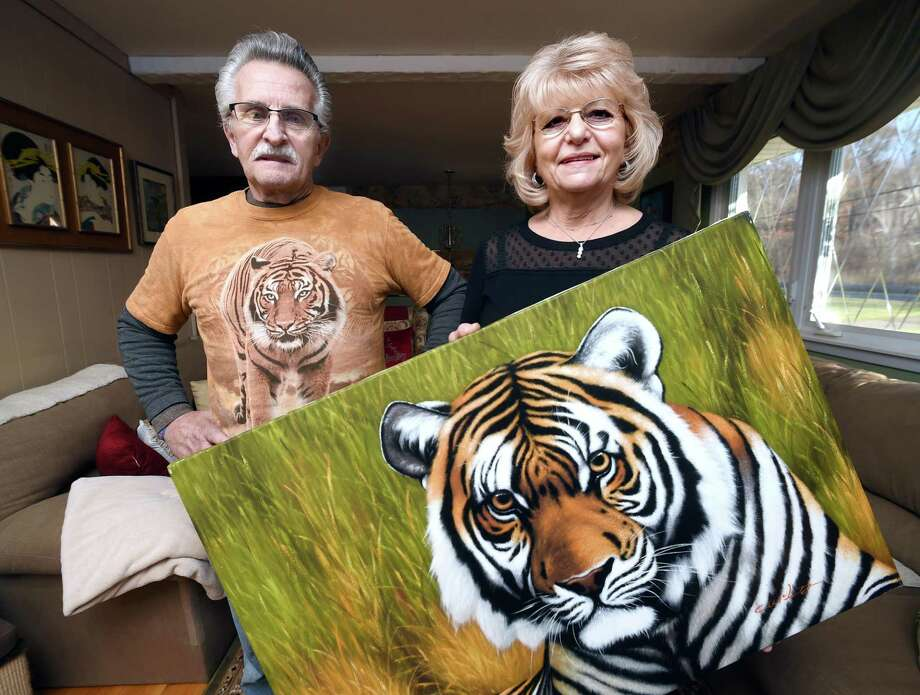 Jim and Fran DiMaggio, who are foster parents to two tigers at Tiger World in North Carolina, are photographed in their home in North Branford. Photo: Arnold Gold / Hearst Connecticut Media / New Haven Register