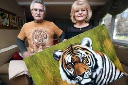 Jim and Fran DiMaggio, who are foster parents to two tigers at Tiger World in North Carolina, are photographed in their home in North Branford.