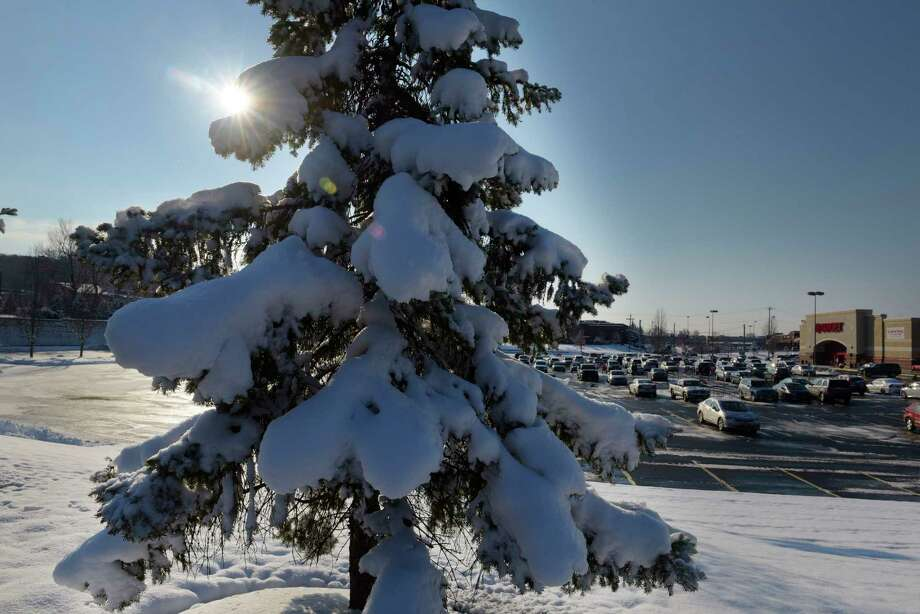 Snow covers the trees on Sunday, Dec. 10, 2017, in North Greenbush, N.Y.  (Paul Buckowski / Times Union) Photo: Albany Times Union