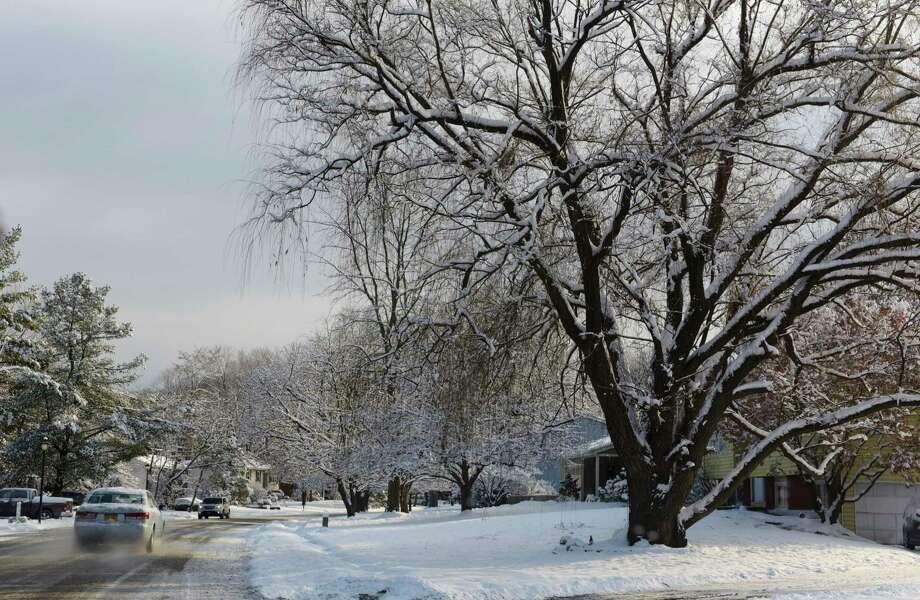 Snow covers the trees on Sunday, Dec. 10, 2017, in East Greenbush, N.Y.  (Paul Buckowski / Times Union)