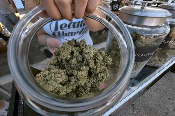 FILE - In this Nov. 11, 2017 file photo, one of an assortment of marijuana strains are displayed during the High Times Harvest Cup in San Bernardino, Calif. On Friday, Dec. 8, 2017, California began accepting applications from businesses that want to operate in the state's legal marijuana industry next year, a milestone for the emerging market. (AP Photo/Richard Vogel, File)