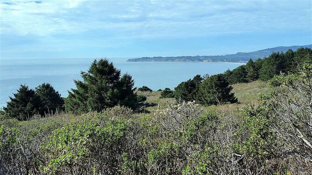 From the Dipsea Trail out of Stinson Beach, you get a panoramic view of the coast toward Bolinas.
