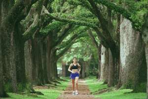A jogger runs under the canopy of live oak trees on the esplanade of North Boulevard in Broadacres. (File Photo)