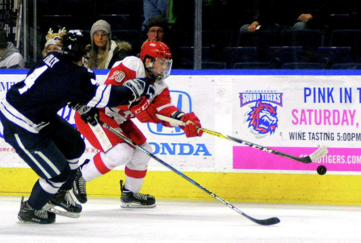 Sacred Heart's Matt Tugnutt chases the puck along the boards as Yale's Matt Foley follows during college hockey action at the Webster Bank Arena in Bridgeport, Conn., on Saturday Dec. 9, 2017.