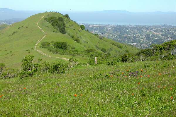 From Inspiration Point at Tilden Regional Park, a 5-mile mountain bike ride on Nimitz Way followed by short hike leads to a hilltop view a dramatic 360-degree view of the north bay.
