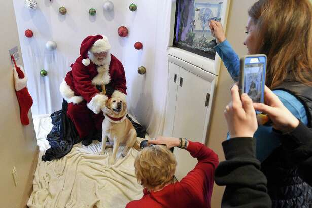 Daisy, a six-year-old yellow lab reacts to her owner Claire Tiscornia, of New Canaan, while being photographed with Santa by Julie McGuire, of New Canaan, at High Ridge Animal Hospital in Stamford Dec. 8.