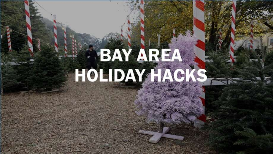 Bay Area alternatives to overpriced and overcrowded holiday traditions. Photo: SFGATE
