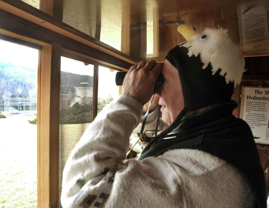 File photo of a volunteer looking out at Shepaug Dam Bald Eagle Observation and Interpretive Area in Southbury. Photo: Michael Duffy / Michael Duffy / The News-Times