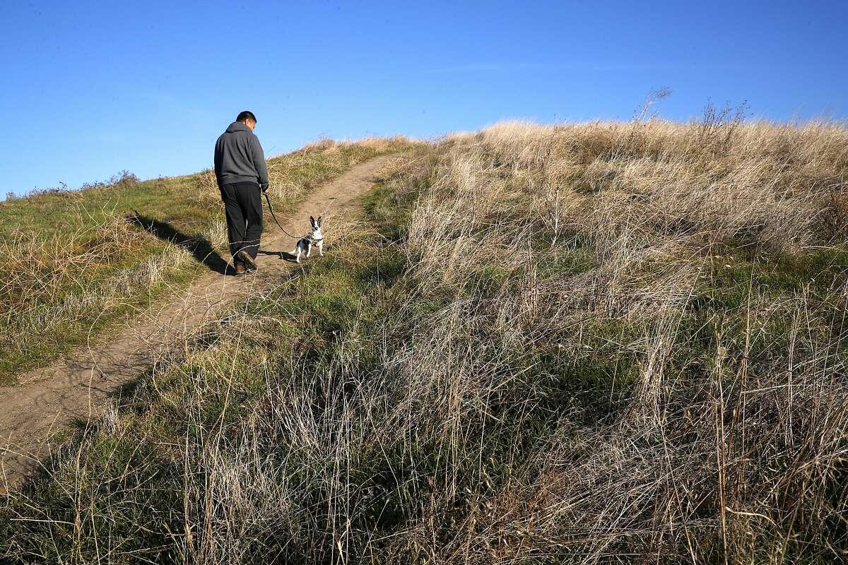 "Jay Liu walks his dog ""Harry"" on the trail through the Dougherty open space on Thursday December 14, 2017, in Dublin, Calif."