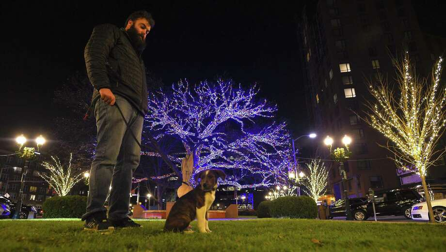 Max DePhillips of Stamford and his puppy Zucc, a 12-week-old Labrador mix enjoy a magnificent palette of lights on Dec. 6, 2017 that deck the trees from Columbus Park to Atlantic Street to Bedford, ending at Latham Park in Stamford, Connecticut. The holiday display by the Stamford Downtown Special Services District decorated some 80 plus trees utilizing energy-efficient, LED lights exclusively. The large oak tree at Columbus Park decorated with 50,000 multi-color led lights highlights the holiday spectacular. Photo: Matthew Brown / Hearst Connecticut Media / Stamford Advocate