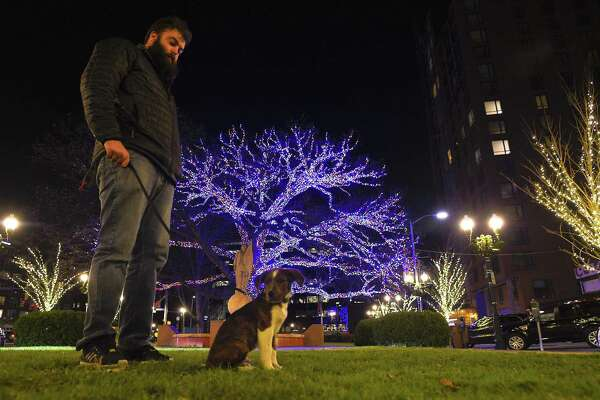 Max DePhillips of Stamford and his puppy Zucc, a 12-week-old Labrador mix enjoy a magnificent palette of lights on Dec. 6, 2017 that deck the trees from Columbus Park to Atlantic Street to Bedford, ending at Latham Park in Stamford, Connecticut. The holiday display by the Stamford Downtown Special Services District decorated some 80 plus trees utilizing energy-efficient, LED lights exclusively. The large oak tree at Columbus Park decorated with 50,000 multi-color led lights highlights the holiday spectacular.