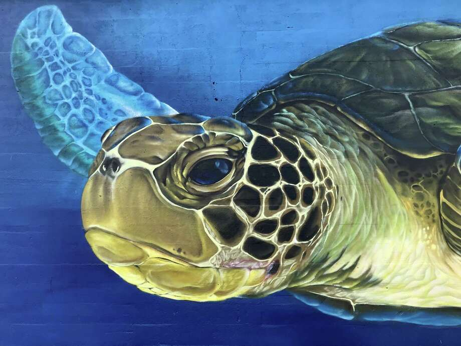 """Details of Pilot FX's """"Turtle Soup"""" mural in the 7400 block of J.W. Peavy near Hidalgo Park in Houston's East End reveal bright artwork in an area ripe for redevelopment. Photo: Molly Glentzer"""