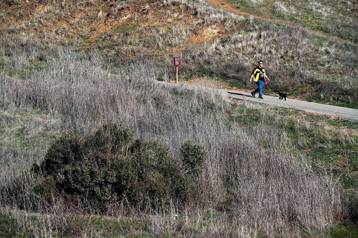 """Bill Chinn of Castro Valley walks his dog """"Muffin"""" along the Fairmont Ridge open space trail on Thursday December 14, 2017, in Castro Valley, Calif."""