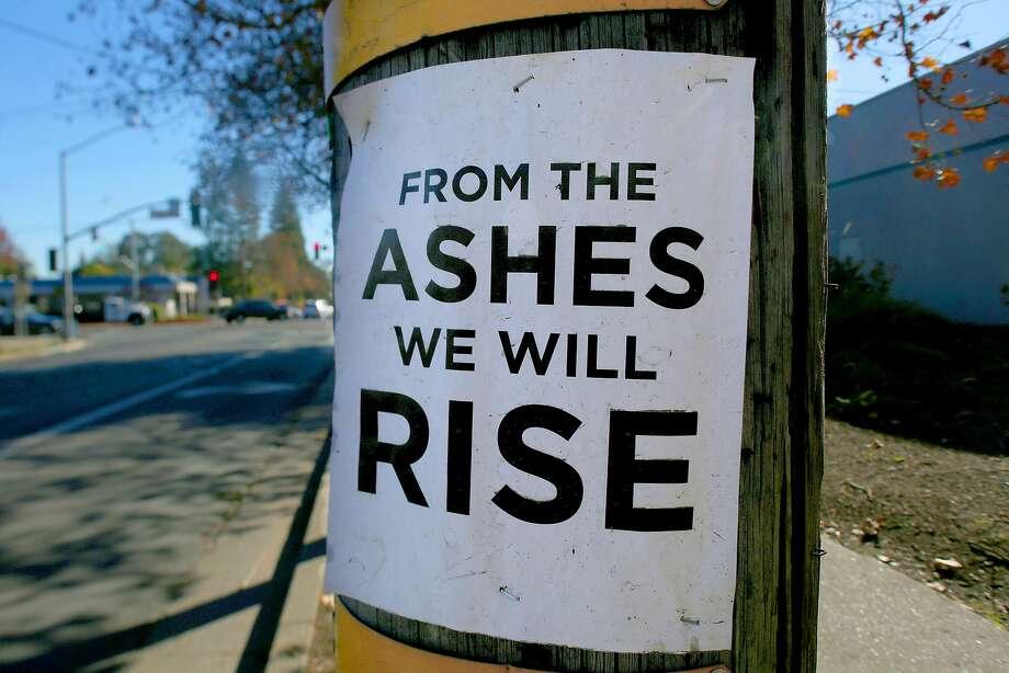 A sign on an electric pole on Coffey Lane in Santa Rosa. Photo: Liz Hafalia, The Chronicle