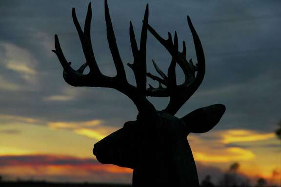 Deer hunters in Texas' North Deer Zone would see the general hunting season for white-tailed deer, which sees as many as 750,000 hunters go afield, extended by two weeks under a petition for rulemaking to be considered by the Texas Parks and Wildlife Commission in 2018.