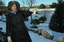 Neighborhood activist Laurie Mirra from South Norwalk and Village Creek describes the plan to beautify Woodward Avenue Park Thursday, December 14, 2017, at the park in Norwalk, Conn. The completed improvements include the addition of new trees and shrubs including dogwoods, lilacs, honey locust, mountain laurel, holly and inkberry, but have not yet received any grants or Recreation and Parks budget to help execute the rest of their plan.