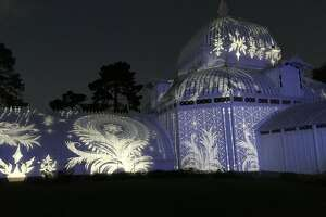 """Love For All Seasons"" at the Conservatory of Flowers"