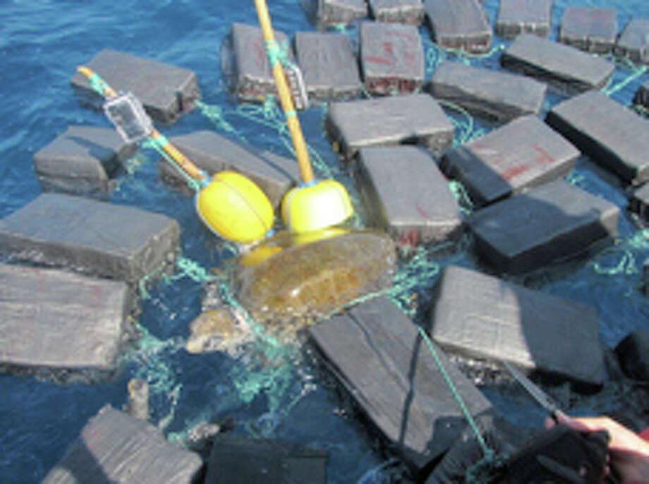 A Coast Guard Cutter Thetis found a sea turtle entangled in cocaine bales worth $53 million. (Coast Guard photo) Photo: U.S. Coast Guard District 7