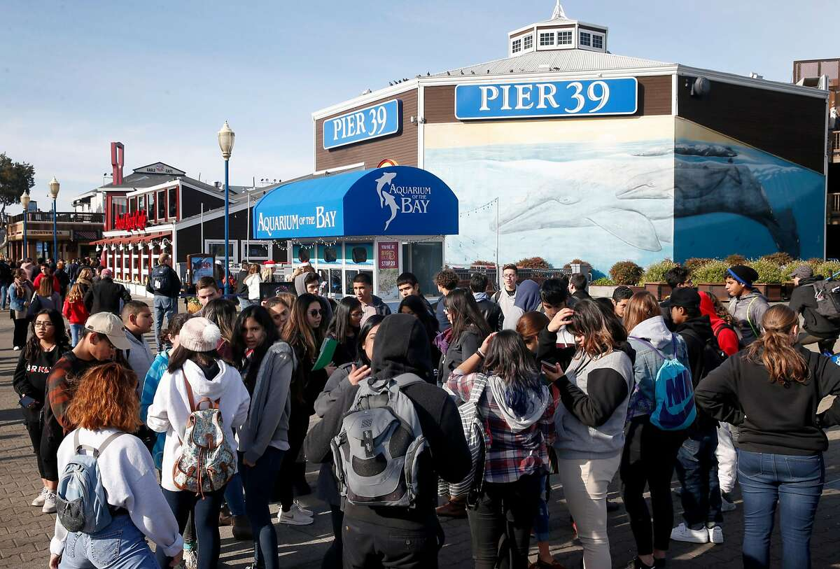 A tour group organizes at the entrance to Pier 39 in San Francisco, Calif. on Friday, Dec. 22, 2017. FBI officials have taken a person into custody who, authorities say, was planning a terrorist attack at the popular tourist destination on Christmas Day.