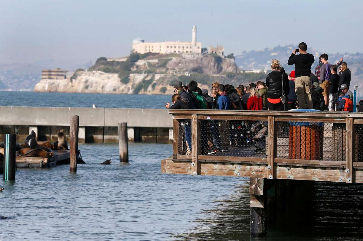 Guests gather to watch the famous sea lions at Pier 39 in San Francisco.