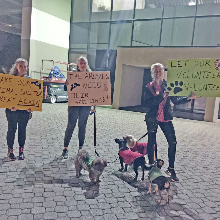 Protesters who support volunteers at the local animal shelter present their views outside the Missouri City City Hall. Photo: Courtesy Photo