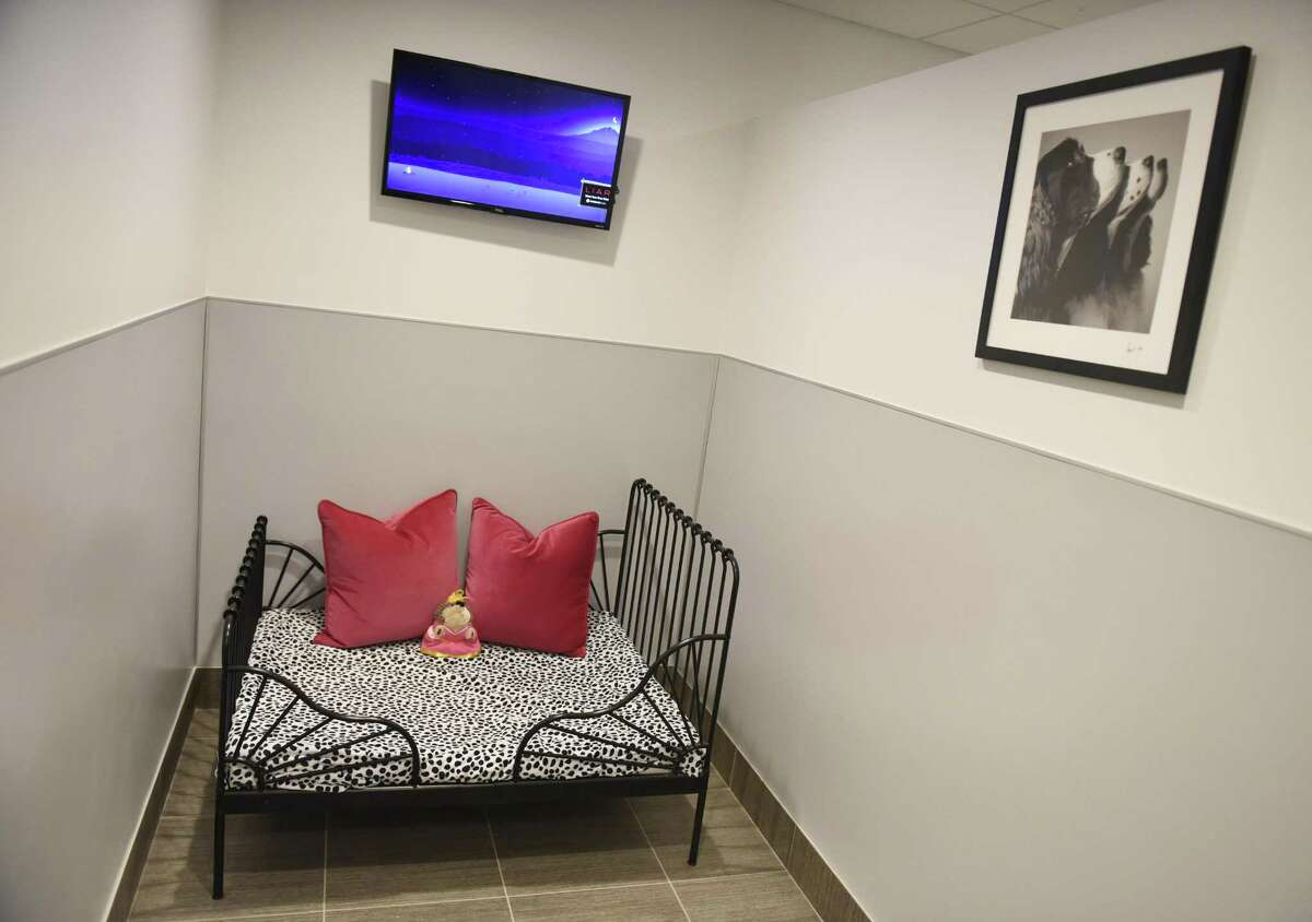 One of the luxury dog boarding suites at Spot On Veterinary Hospital & Hotel at 184 Selleck St., in Stamford, Conn.