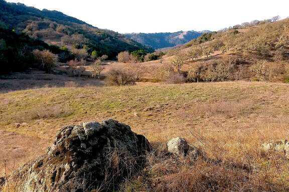 The view from Redfern Trail across Hunting Hollow at Henry W. Coe State Park, the doorway to the park's 87,000 acres