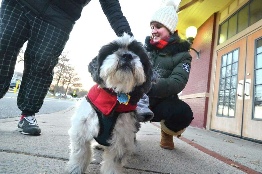Freezing temperatures didn't stop Kaitlyn and Joey Lafferty from taking their Shih Tzu Seamus for a walk in his doggie coat in Norwalk on Tuesday. Photo: Alex Von Kleydorff / Hearst Connecticut Media / Norwalk Hour
