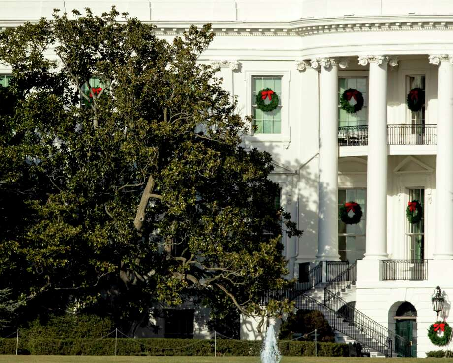 White House To Cut Back Magnolia Tree Planted By Andrew Jackson