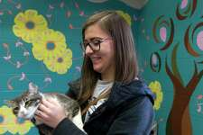 Chelsea Jimenez plays with a stray cat named Carol she is considering adopting at the Conroe Animal Shelter, Tuesday in Conroe.