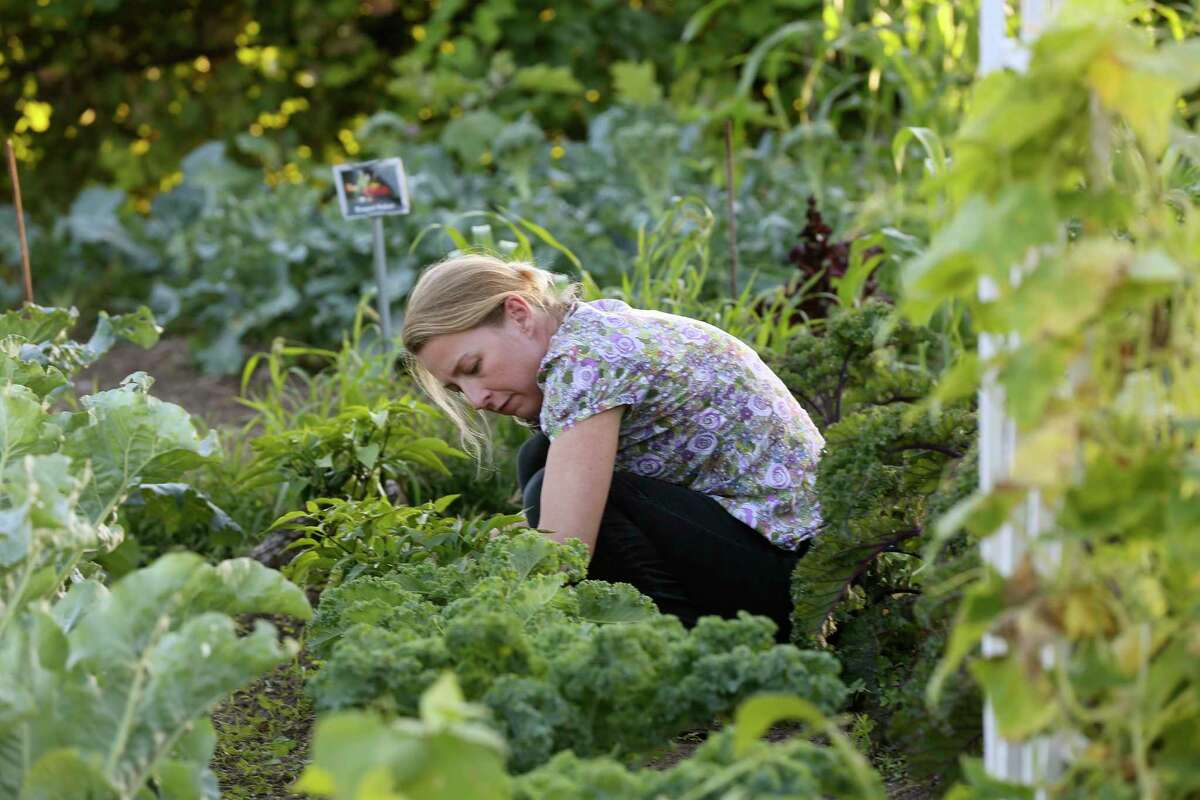 Fifteen to 20 percent of the world's food is produced through urban agriculture, including city farms, community gardens and other creative forms of growing food in densely populated areas.