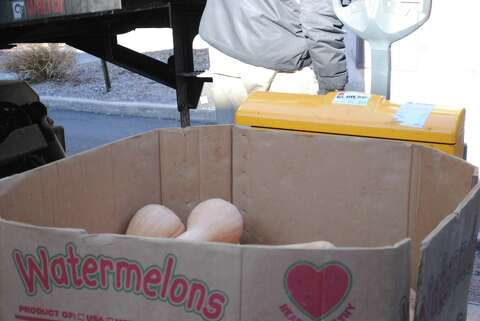 Wondrous New Haven Soup Kitchen Receives Large Squash Donation From Interior Design Ideas Clesiryabchikinfo
