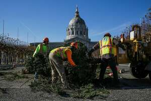 (l-r) Department of Public Works employees Robert Stafford, Robert Davis and Cedric Bacchus work to put trees into a chipper during a tree chipping demonstration to announce the annual curbside tree recycling program outside City Hall in San Francisco, Calif., on Thursday, Dec. 28, 2017.