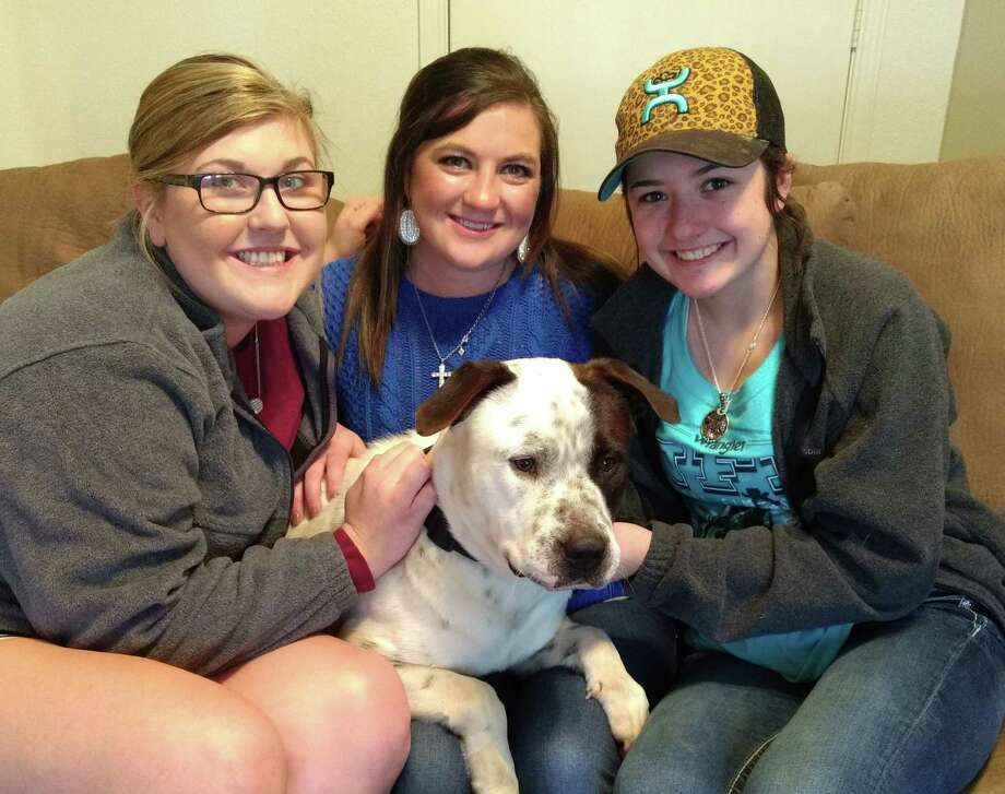 An abandoned dog now has a new home after it was rescued by three Hardin women. Numerous people had tried to rescue the dog in recent days but the dog refused to leave his dead friend until Wednesday night when he was captured by Sommer Miles, Madison Waskow and Chloe Miles, all of Hardin. Photo: Vanesa Brashier