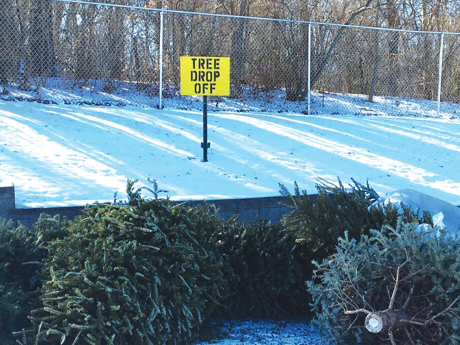 Several area residents have already visited the tree recycling drop-off site at Edwardsville Township Park. Photo: John Sommerhof • Jsommerhof@edwpub.net