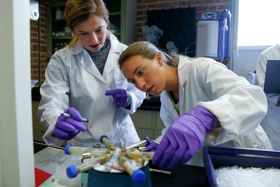 Rice University junior Anna Knochel, left, and PhD student Lauren Howe-Kerr test coral samples taken from the Gulf of Mexico to study the health of the reef systems after the influx of fresh water from Hurricane Harvey Wednesday, Dec. 6, 2017 in Houston. Photo: Michael Ciaglo, Houston Chronicle / Michael Ciaglo