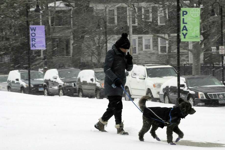 Rosalie Lafauci of Manhattan sheilds her face from freezing rain as she walks Luca, a 11 1/2 year-old Labradoodle around Harbor Point Commons Park during a winter storm in Stamford, Conn. on March 14, 2017. Photo: Matthew Brown / Hearst Connecticut Media / Stamford Advocate