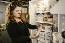 PORTLAND, ME - MARCH 24: Duckfat restaurant manager Ashley Shane inside the freezer where 80 pounds of embargoed meat is held by order of the Portland Health Inspector in Portland, ME on Tuesday, March 24, 2015. (Photo by Whitney Hayward/Portland Press Herald via Getty Images)