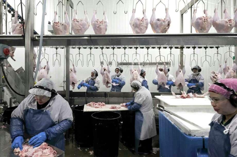 Employees work in a refrigerated environment processing turkeys at Dakota Provisions in Huron, South Dakota. Must credit: Washington Post photo by Bonnie Jo Mount Photo: Bonnie Jo Mount, The Washington Post / The Washington Post