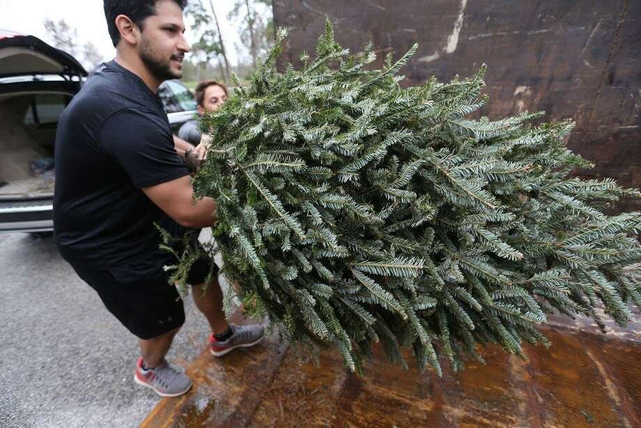 A man helps his sister recycle her Christmas tree. Photo: File Photo / © 2015 Houston Chronicle