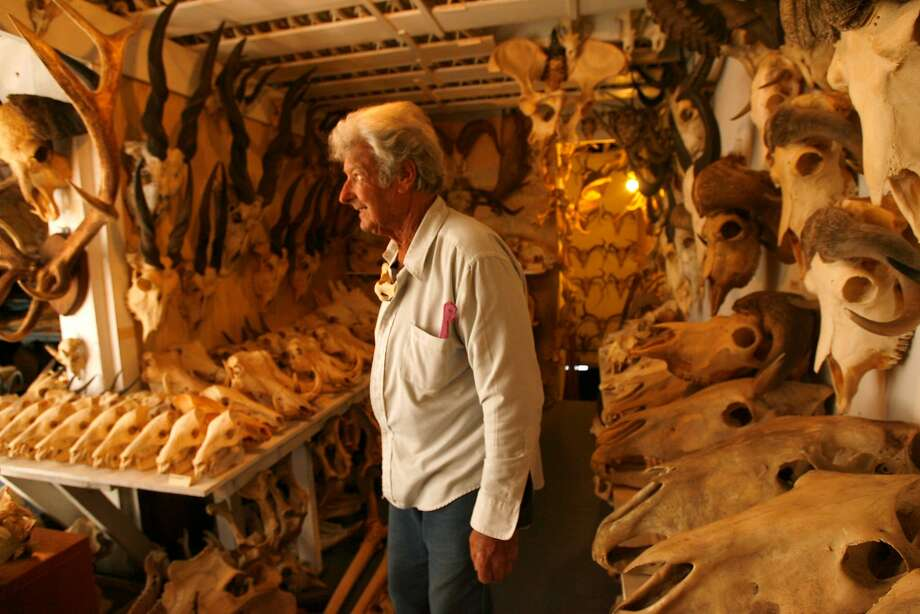 Biologist Ray 'Bones' Bandar, who kept more than 6,000 skulls in the basement of his San Francisco home, has died at 90. Photo: Deanne Fitzmaurice, SFC