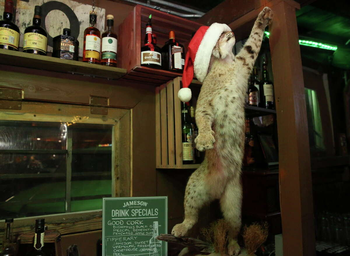 Bobcat Teddy's Ice House has a stuffed bobcat behind the counter on Thursday, Dec. 21, 2017, in Houston. ( Yi-Chin Lee / Houston Chronicle )