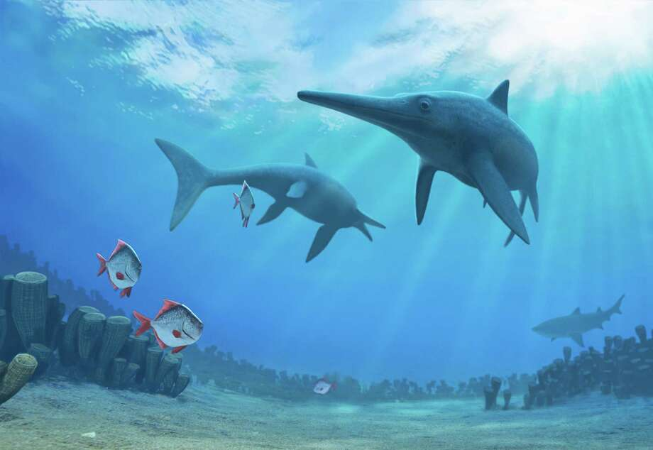Dinosaur Time Trek: Shark Edition  interactive dinosaur exhibit focuses on prehistoric dinosaurs  and modern-day sharks. Photo: AFP PHOTO / NATURE PUBLISHING GROUP/ Andrey Atuchin, Stringer / AFP or licensors
