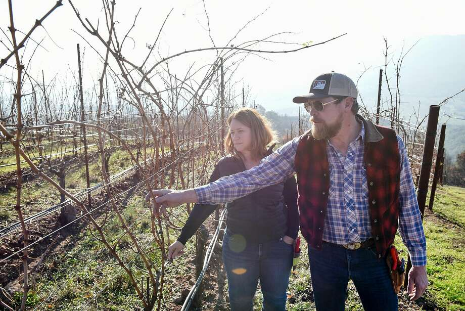 Lambert Bridge winemaker Jennifer Higgins and vineyard manager Scott Knippelmeir inspect Cabernet Sauvignon vines for smoke and fire damage at Gilfillan Vineyard in Glen Ellen. Photo: Michael Short, Special To The Chronicle