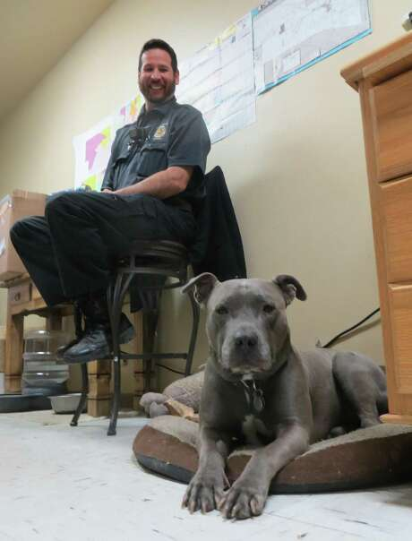 Nelson, who recently retired as canine ambassador for Kerr County, is shown on his pillow in the county animal shelter office as Animal Control Officer Mike Wong looks on. Photo: Photo By Zeke MacCormack / San Antonio Express-News / Staff