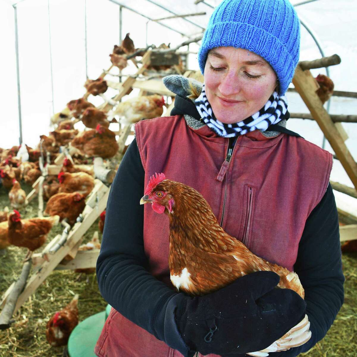 Annie Metzger with one of the chickens on her Laughing Earth Farm Thursday Dec. 14, 2017 in Cropseyville, NY. (John Carl D'Annibale / Times Union)