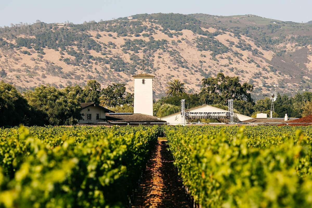 To Kalon Vineyard photographed with Robert Mondavi Winery in the background in Oakville, Calif. Tuesday, July 18, 2017.