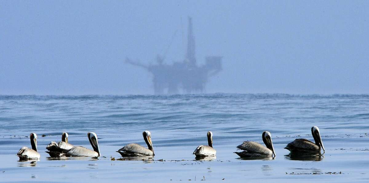 FILE - In this May 13, 2010 file photo, pelicans float on the water with an offshore oil platform in the background in the Santa Barbara Channel off the coast of Santa Barbara, Calif. The Trump administration on Thursday, Jan. 4, 2018 moved to vastly expand offshore drilling from the Atlantic to the Arctic oceans with a plan that would open up federal waters off the California coast for the first time in more than three decades. The Channel is one of those areas. (AP Photo/Mark J. Terrill, File)