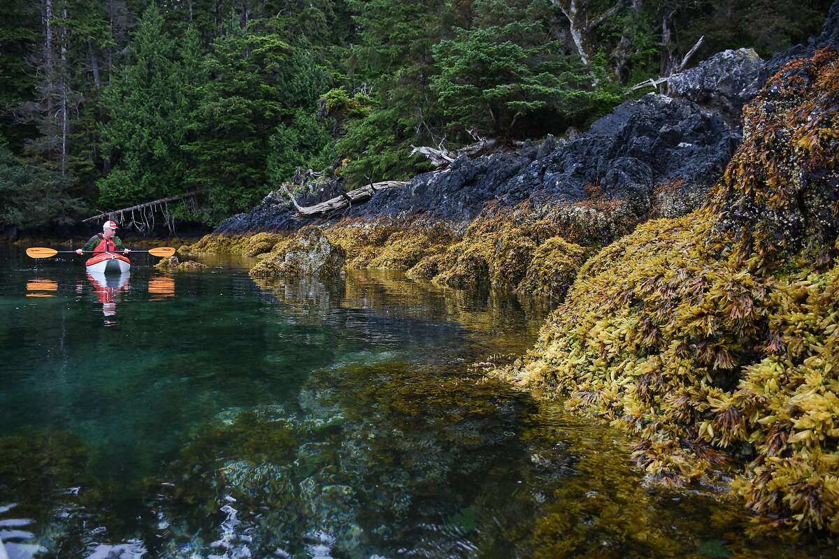 Scenes from a weeklong cruise around the Haida Gwaii Islands off British Columbia�s north coast.