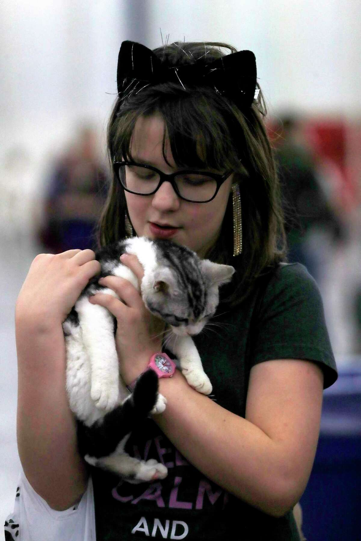 Sofia Barbee, 10, holds a kitten during the 65th annual Houston Cat Club Charity Cat Show at the George R. Brown Convention Center, Saturday, Jan. 6, 2018, in Houston. ( Karen Warren / Houston Chronicle )